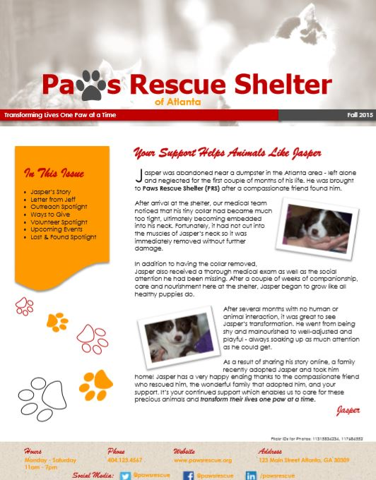 Paws Rescue Shelter Newsletter